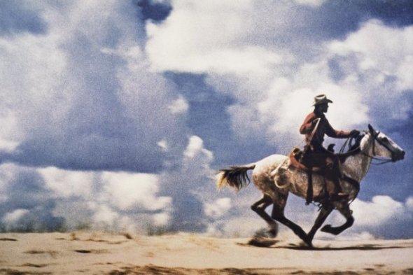 Untitled (Cowboy) - Richard Prince (2001-02) achiziţionată cu 3,4 milioane de dolari