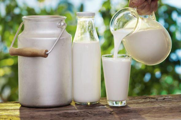 mai-destept-in-bucatarie-cum-alegi-cel-mai-bun-lapte-de-baut_size1