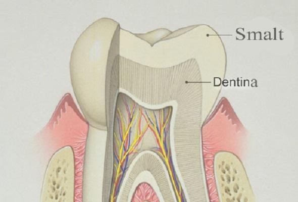 smalt-si-dentina